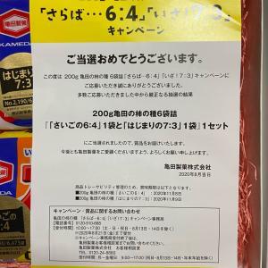 8月当選品 1〜3個 累計208個 松坂牛 野菜詰め合わせ
