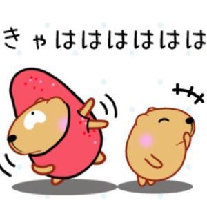 今日のさなぷ〜懸賞生活 スーパー巡り