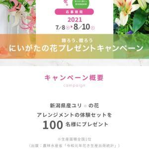 にいがたの花プレゼントキャンペーン