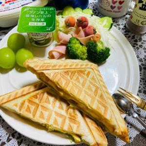 今日の朝食 たまごのホットサンド