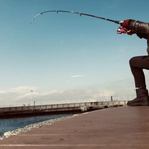 0213平日釣行 その1