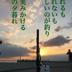 1006片瀬漁港強風釣行