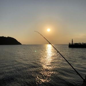 12月一発目マジ釣れない釣行記片瀬漁港
