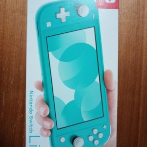 【レビュー】Nintendo Switch Liteを買ったら一緒に買いたい保護ガラスフィルム、ケース、カバー