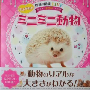 【書評】学研の図鑑LIVEミニミニ動物を購入、もふかわ動物たくさん、意外と勉強にも