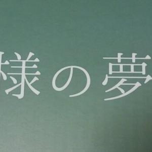 【レビュー】東急ハンズで王様の夢枕2をお得に購入、首が痛い問題が解決?日本製。