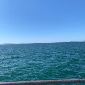 貝塚人工島でノマセとテンヤ