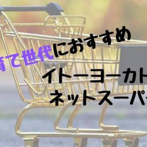 イトーヨーカドーネットスーパー 子育て中のママにおすすめ!送料100円で楽々買い物。