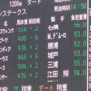 シャワーブーケちゃん応援記