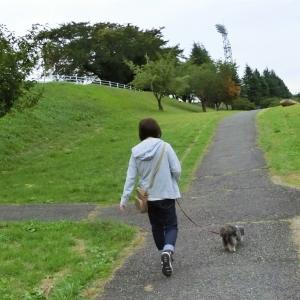 東運動公園を散歩(八戸市湊高台)  モコとココ