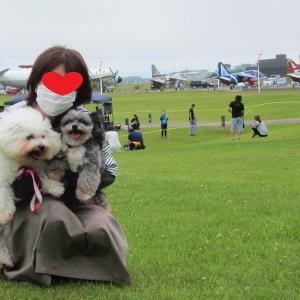 大空ひろば「わんにやんふれあいランド」(三沢市 航空科学館)  モコとココ