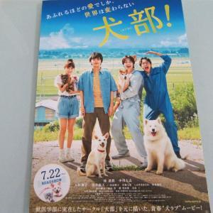 TOHOシネマズ「犬部」(おいらせ町 イオンモール下田)  モコとココ