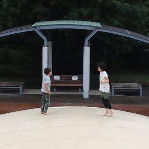 夏至~本日のタカリ物釣行