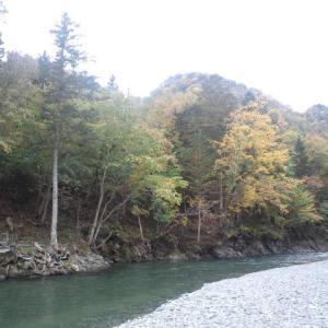 渓流釣りシーズン残り僅か・・・
