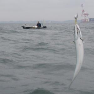 ボート釣り第26回、第27回