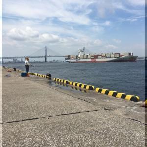 190810:【番外編】横浜沖堤11回目