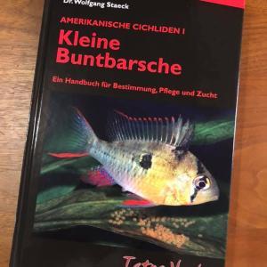 (KleineBuntbarsche2021)Kleine Buntbarsche:Amerikanische Cichliden Iを手に入れました