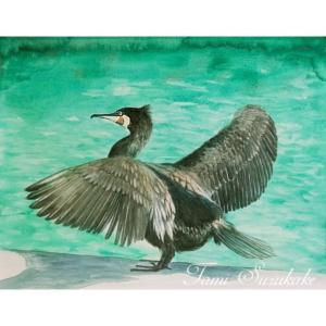 絵画販売・水彩画・原画「鳥画・河鵜」