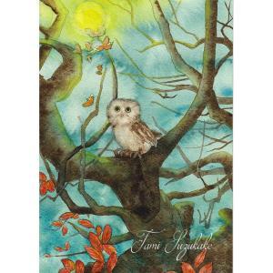絵画販売・水彩画・原画「森のフクロウ」