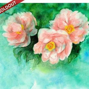 SOLDOUT・水彩・原画「牡丹の花」お買い上げいただきました。