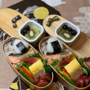 焼き鮭弁当&はなちゃん&恩田陸「朝日のようにさわやかに」