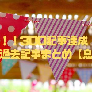 祝!!!300記事達成記念!!!N家的過去記事まとめ【息子編】