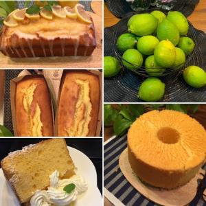 レモンパウンドケーキ&レモンシフォン