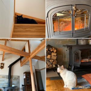 薪ストーブのある家&ランチ&猫