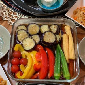 夏野菜の揚げ浸し&20歳猫&桜木紫乃「氷の轍」