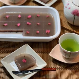 手作り水ようかん&20歳猫&桜木紫乃「それを愛とは呼ばず」