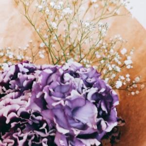 『appreciation』花のある暮らし