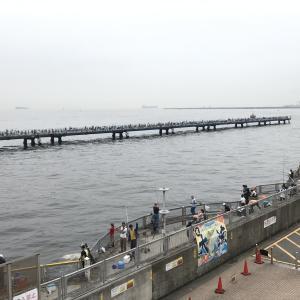 本牧海釣り施設の渡り桟橋復旧工事が始まりました
