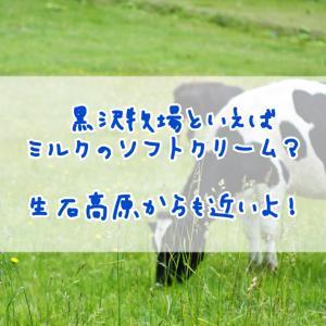 黒沢牧場といえばミルクのソフトクリーム?生石高原からも近いよ!