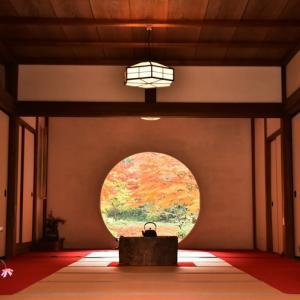 「鎌倉殿の13人」早くも発表されました  2022年NHK大河ドラマ
