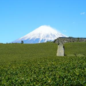 渋沢栄一 日本で初めての「商法会所」を設立 2021年NHK大河ドラマ「青天を衝け」