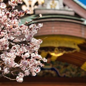 渋沢栄一 明治政府の大蔵省官僚になる 2021年NHK大河ドラマ「青天を衝け」