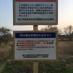 多摩川の動物遺棄防止対策