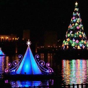 帰りたくないTDSの夜。水上クリスマスツリーから離れれない・・