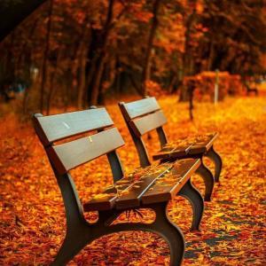 スナック『秋』へようこそ!【曲紹介】