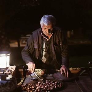 なぜお年寄りは「里芋と蓮根の煮物」みたいな色の服を着ているのだろう?