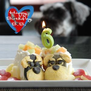 BB6歳のお誕生日