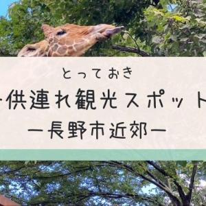 長野市近郊の子連れ観光おすすめスポット12選!地元民厳選の遊び場を紹介します!