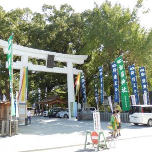熊本でブラハジメ!