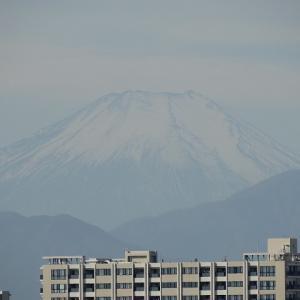 翌日も浅間山に行きました。