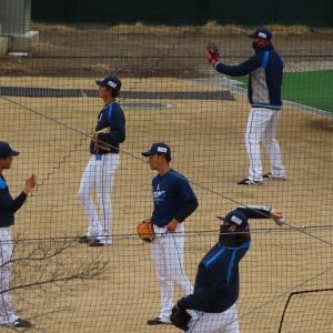 野球の音が聴こえる~開幕迫る~