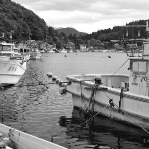冬の湖(ふゆのうみ)