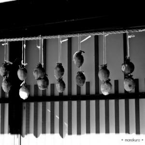 吊 し 柿