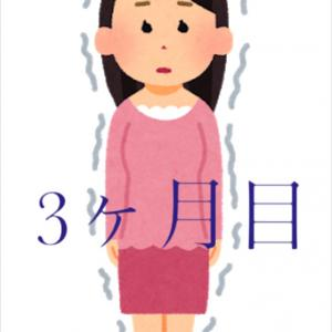 ブログ3ヶ月目の運営報告【2ヶ月目から…時が止まった!?】