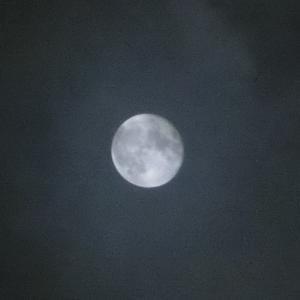 中秋の名月✩