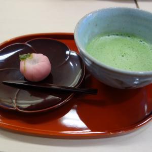豊洲市場の甘味処 茂助だんご